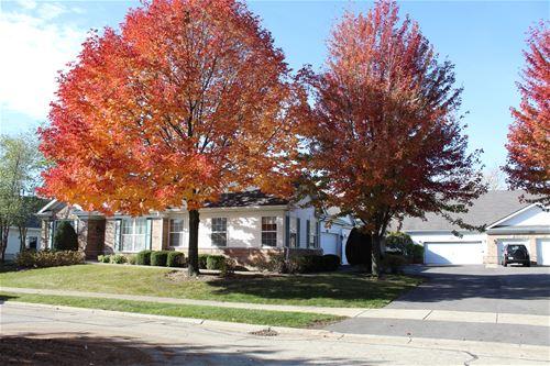 21128 W Braxton, Plainfield, IL 60544