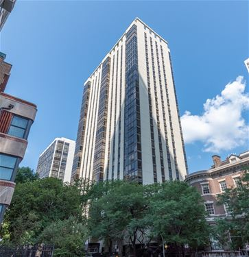 100 E Bellevue Unit 21B, Chicago, IL 60611 Gold Coast