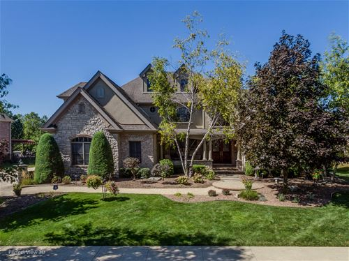11884 Coquille, Frankfort, IL 60423