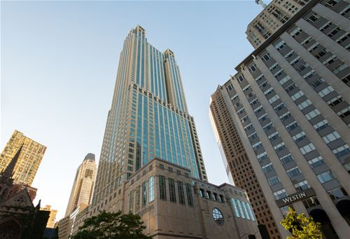 132 E Delaware Unit 6502, Chicago, IL 60611 Gold Coast