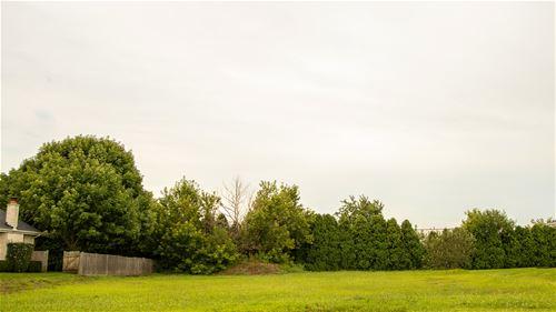 8725 Black Oak, Tinley Park, IL 60487