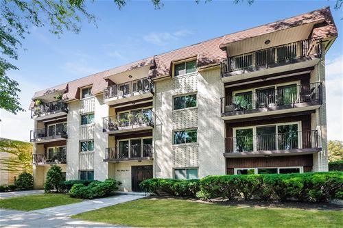 339 Home Unit 2F, Oak Park, IL 60302