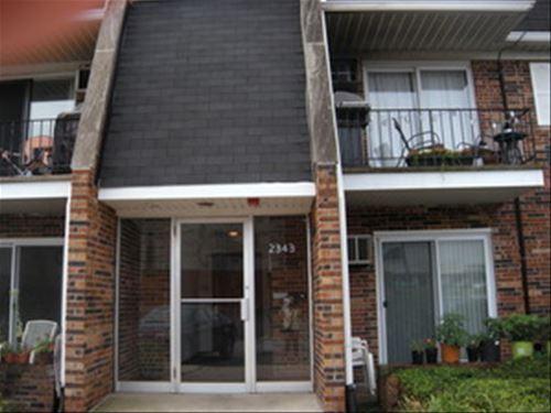 2343 Ogden Unit 11, Downers Grove, IL 60515