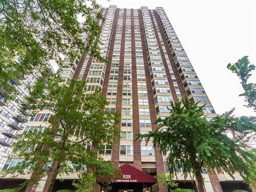 525 W Hawthorne Unit 2407, Chicago, IL 60657 Lakeview