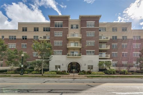 965 Rogers Unit 203, Downers Grove, IL 60515