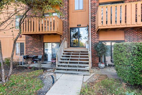 724 Rodenburg Unit 204, Roselle, IL 60172