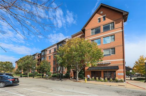 930 Curtiss Unit 101, Downers Grove, IL 60515