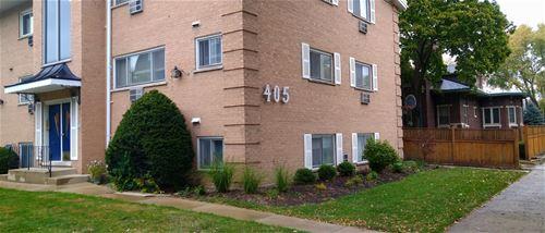 407 S Wesley Unit 2, Oak Park, IL 60302