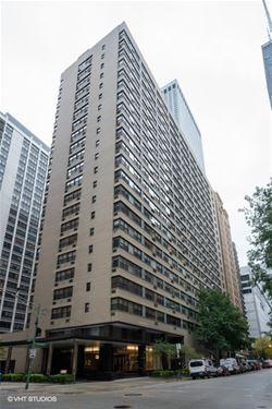 850 N Dewitt Unit 18C, Chicago, IL 60611 Streeterville
