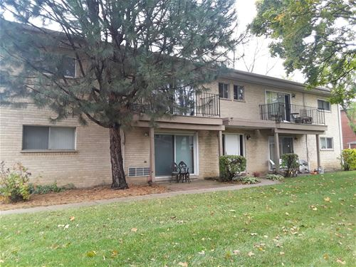 19 E Palatine Unit 2D, Arlington Heights, IL 60004