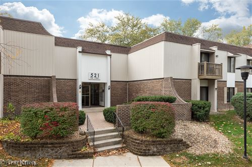 521 73rd Unit 105, Downers Grove, IL 60516