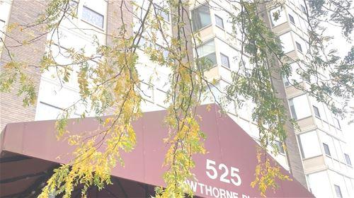 525 W Hawthorne Unit 403, Chicago, IL 60657 Lakeview