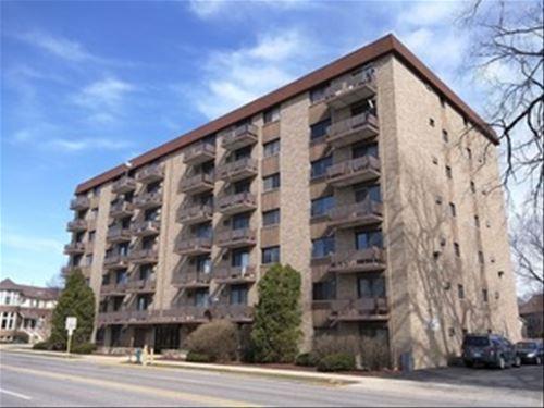 850 Des Plaines Unit 208, Forest Park, IL 60130