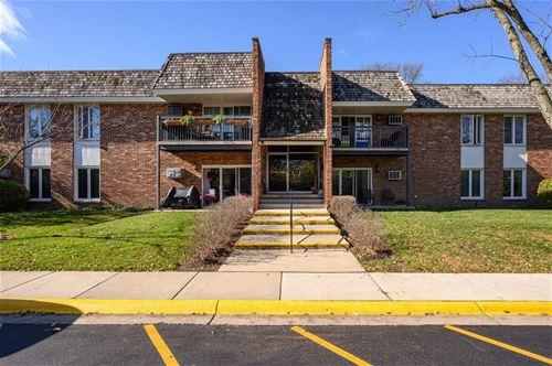 3941 Saratoga Unit 212, Downers Grove, IL 60515