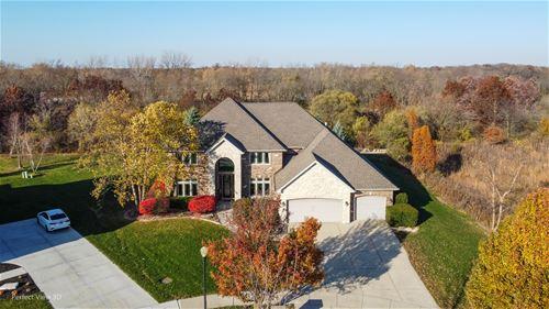 7806 Northwoods, Frankfort, IL 60423