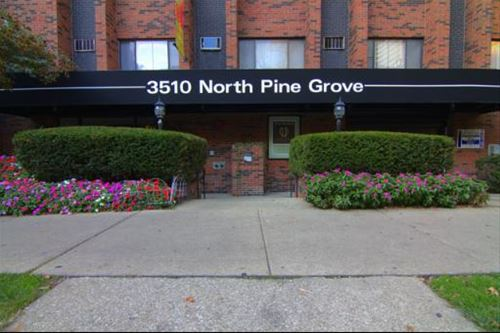 3510 N Pine Grove Unit 513, Chicago, IL 60657 Lakeview