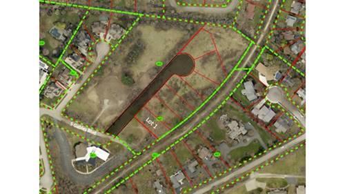 Lot 1 Lodalia, Wheaton, IL 60189