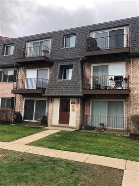 920 S Plum Grove Unit 326, Palatine, IL 60067