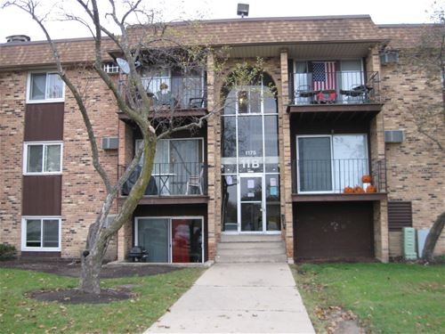 1175 Higgins Quarters Unit 11-210, Hoffman Estates, IL 60169
