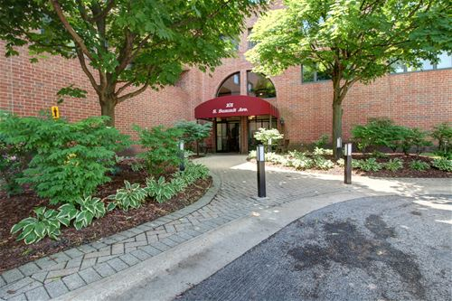101 Summit Unit 406, Park Ridge, IL 60068