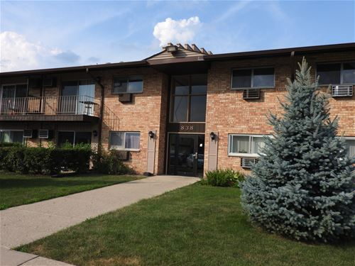 838 E Old Willow Unit 205, Prospect Heights, IL 60070