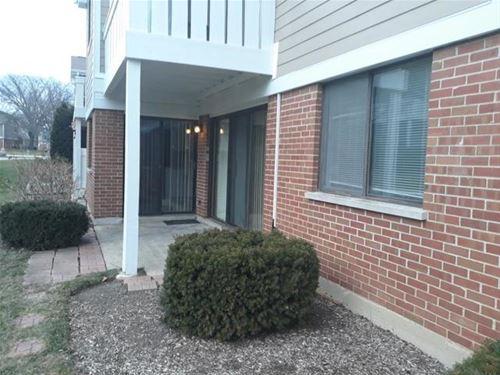 366 Pinetree Unit D1, Schaumburg, IL 60193