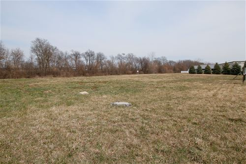 Lot 3 Stone, New Lenox, IL 60451
