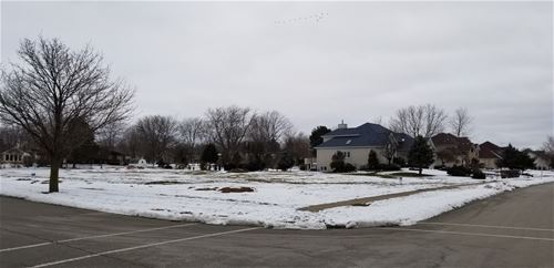 12836 Shelly, Plainfield, IL 60585