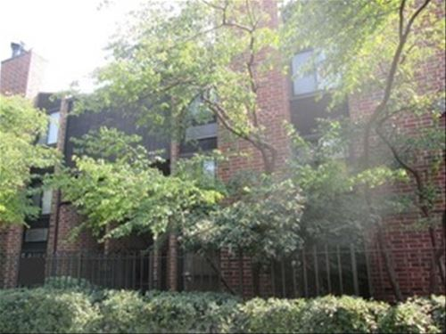2225 N Halsted Unit 3, Chicago, IL 60614 Lincoln Park
