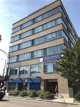 558 W Webster Unit 220, Chicago, IL 60614 Lincoln Park
