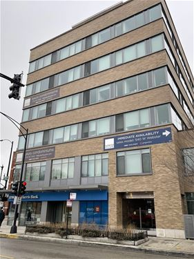 558 W Webster Unit 608, Chicago, IL 60614 Lincoln Park