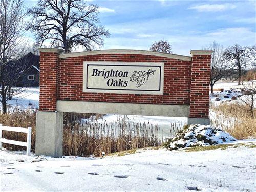 11318 Brighton Oaks, Yorkville, IL 60560