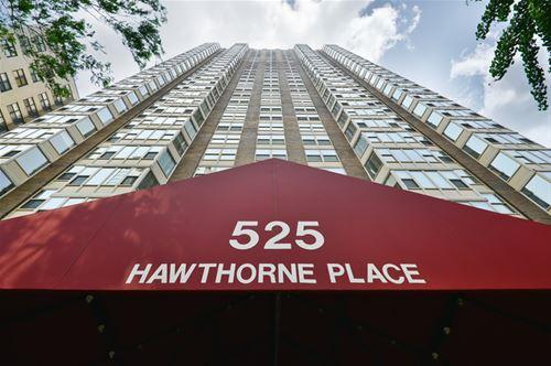 525 W Hawthorne Unit 2001, Chicago, IL 60657 Lakeview
