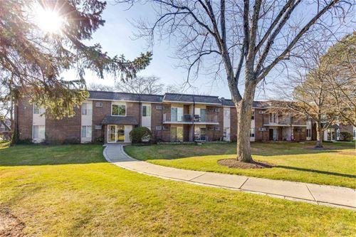 1089 Miller Unit 207, Buffalo Grove, IL 60089