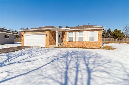 8 Caribou, Bolingbrook, IL 60440