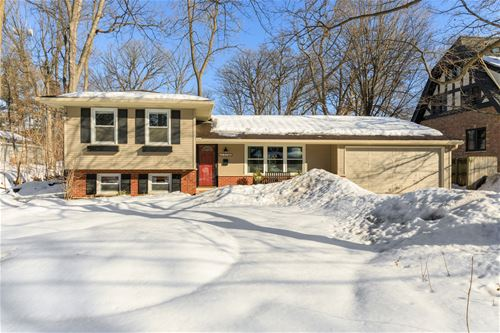 1310 Gilbert, Downers Grove, IL 60515