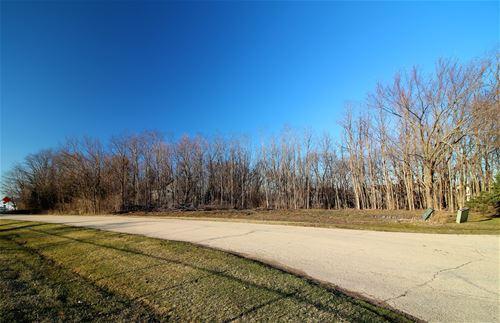 Lot 3 Walnut, Yorkville, IL 60560