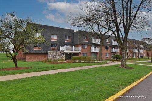 924 Ridge Unit 301, Elk Grove Village, IL 60007
