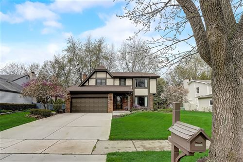 1135 Whirlaway, Naperville, IL 60540