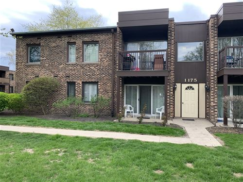 1175 Pleasant Run Unit 401, Wheeling, IL 60090