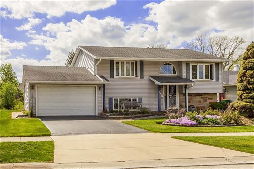 1144 Cheltenham, Elk Grove Village, IL 60007