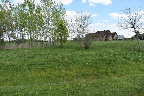 24319 S Armagh, Frankfort, IL 60423