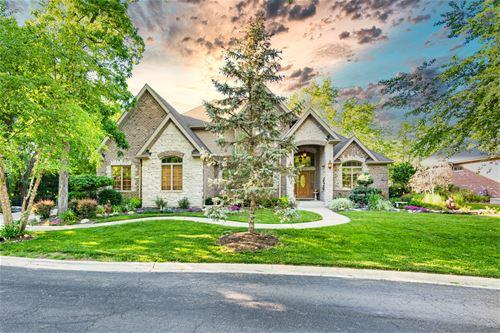 209 Linden Oaks, New Lenox, IL 60451