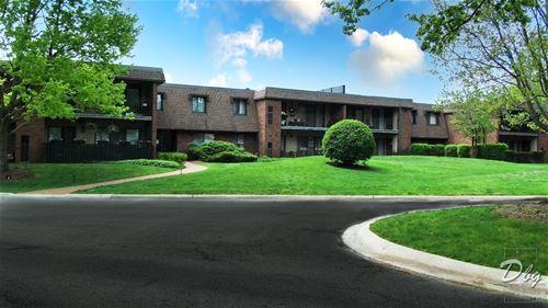190 Old Oak Unit 157, Buffalo Grove, IL 60089