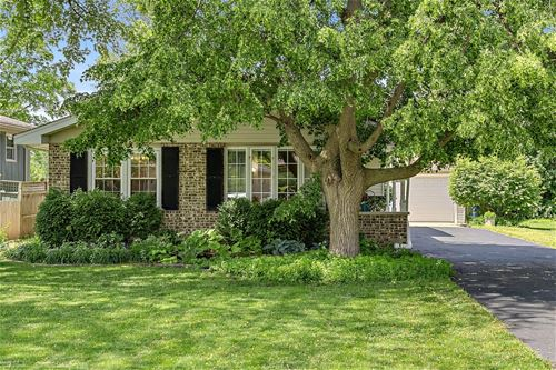 6142 Janes, Downers Grove, IL 60516