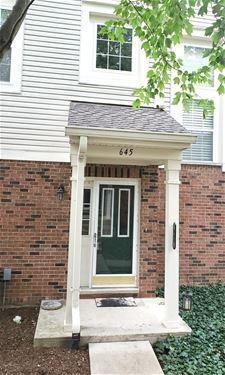 645 W Natalie Unit 645, Addison, IL 60101