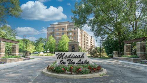 125 Lakeview Unit 309, Bloomingdale, IL 60108