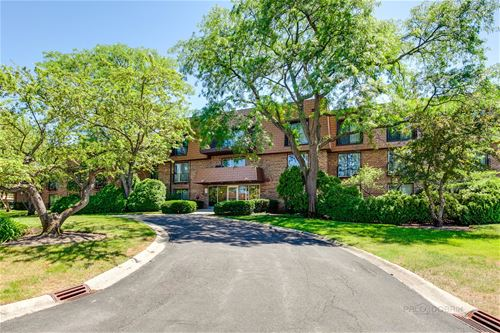 3900 Dundee Unit 103, Northbrook, IL 60062