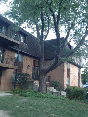 4 Oak Creek Unit 1502, Buffalo Grove, IL 60089
