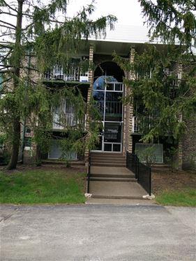 1517 N Windsor Unit 205, Arlington Heights, IL 60004